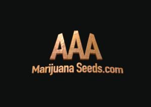 aaa marijuana seeds com