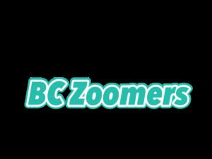 BCZoomers.com Magic Mushroom Domains For Sale