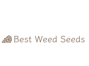 BestWeedSeeds.ca