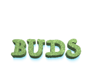 Buds.org cannabis domain for sale
