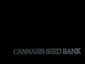 CannabisSeedBank.net