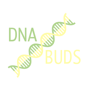 DNABuds.com cannabis domain names for sale