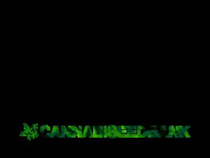 cannabiseedbank.com Buy Cannabis Domains Names