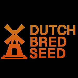 DutchBredSeed.com Dutch cannabis domains for sale