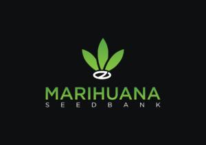 MarihuanaSeedBank.net