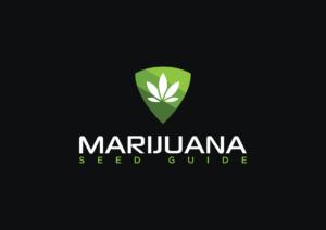 MarijuanaSeedGuide.com