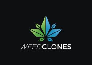 weedclones.com