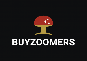 buyzoomers.com
