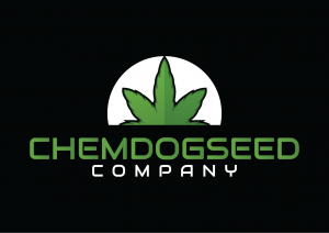 chemdogseedcompany.com