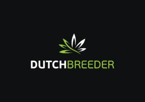 dutchbreeder.com