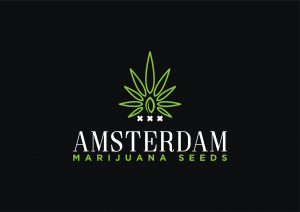amsterdammarijuanaseeds.net