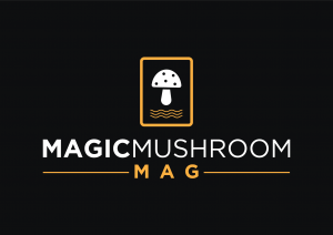magicmushroommag.com