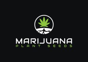 marijuanaplantseeds.com